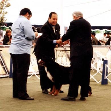 Tina recibiendo premiación, Juez Canadiense